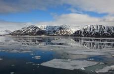 Phát hiện dấu vết 'siêu quái vật' tí hon ở Bắc Cực