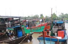 Nhiều tàu cá gặp nạn trên đường tránh bão số 1