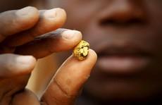 Tổng thống Ghana sợ Trung Quốc 'đào trộm' vàng