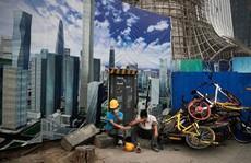 Kinh tế toàn cầu tụt bậc vì Mỹ - Trung 'hục hặc'