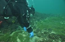 Bí ẩn đáy hồ Constance: 'thủy cung' ma quái xây bởi… người đồ đá?