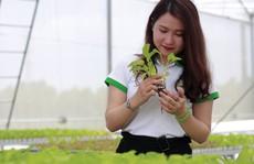 Hơn 2,3 triệu lao động nông thôn được học nghề