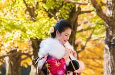 Đến Tokyo dạo dưới tán ngân hạnh nhuộm vàng mùa thu
