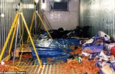 """Từ vụ 39 thi thể trong container: Vén màn thủ đoạn của """"Đầu rắn"""" Trung Quốc"""