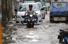 Nhiều 'rốn ngập' ở TP HCM không bị ngập như dự báo triều cường