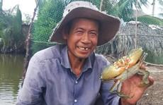 Cua biển xuất sang Trung Quốc 46.000 đồng/kg?