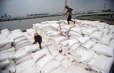 Gạo Thái Lan suy giảm vị thế