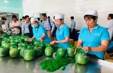 Đưa hàng Việt vào thị trường Thái