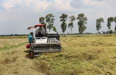 Nhà nông vươn lên làm giàu nhờ Quyết định 68