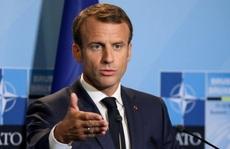 NATO 'chết não', Nga hoan nghênh