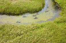 Năm Du lịch Quốc gia 2020: 'Hoa Lư – Cố đô ngàn năm'