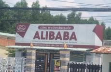 UBND huyện Long Thành - Đồng Nai 'dính' sai phạm của Alibaba?
