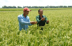 Hành động mới cho nông nghiệp, nông dân