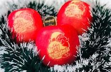 Nửa triệu đồng trái táo in hình ông già Noel