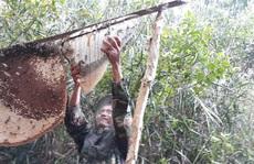 """2 nghề """"độc"""" ở Cà Mau được công nhận di sản văn hóa phi vật thể quốc gia"""