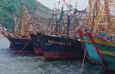 Điều tra tàu vỏ thép bị chìm hàng loạt