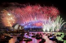 Dân Sydney: Bắn pháo hoa là xúc phạm nạn nhân cháy rừng