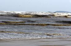 Nước biển màu đen, nổi bọt vàng bất thường ở Quảng Ngãi