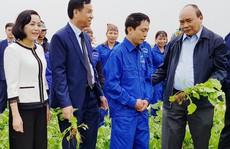 """Thủ tướng: """"Nông nghiệp, nông dân và nông thôn là chủ trương lớn"""""""