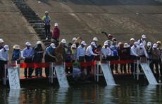 Thả 50.000 con cá giống xuống sông Tranh