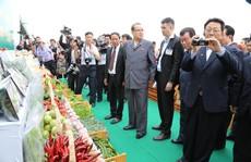 Việt Nam - Triều Tiên là quan hệ máu thịt