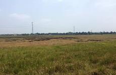 Đất nền ngoại thành TP HCM có thể tăng giá 30%