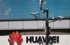 Mỹ 'ra giá' thẳng thừng với Đức về Huawei