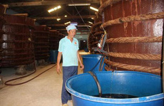 'Áp quy chuẩn nước mắm công nghiệp cho nước mắm truyền thống là rất dở'!