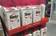 Monsanto lại lao đao vì thuốc diệt cỏ gây ung thư