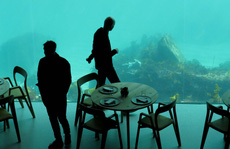 Độc đáo nhà hàng dưới biển
