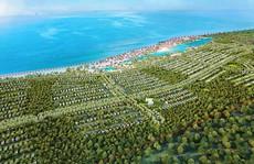 Doanh nghiệp TP HCM đổ đi buôn bất động sản biển