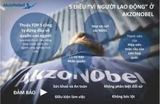 Động lực phát triển của AkzoNobel: không phải câu chuyện doanh số