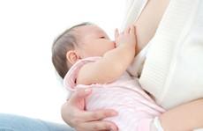Ăn gì để nhiều sữa sau sinh?