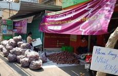 Lập chiến dịch 'giải cứu' khoai lang giúp nông dân Gia Lai