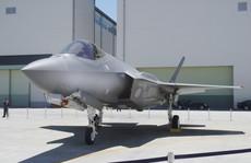 """Nhật Bản xác nhận 'Tia chớp"""" F-35 của Mỹ rơi xuống biển"""