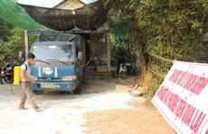 Thừa Thiên - Huế xuất hiện ổ dịch tả heo châu Phi thứ 3