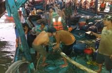 51 ngư dân gặp nạn trên biển, 2 người bị thương nặng phải nhập viện
