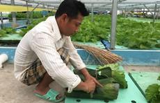 Doanh nghiệp 'nhà quê' hướng tới môi trường