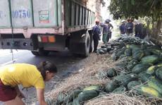 Nông sản xuất sang Trung Quốc phải truy xuất được nguồn gốc