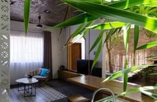 Ngôi nhà mang phong cách nhiệt đới giữa lòng Đà Nẵng