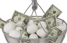 Khởi nghiệp: Có nên bỏ hết trứng vào 1 giỏ?