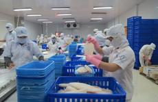 Cá tra Việt Nam đón tin vui từ Mỹ