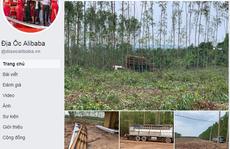 Đồng Nai cảnh báo về 'dự án' của Alibaba ở huyện Xuân Lộc