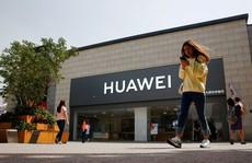 Trung Quốc dọa 'không ngồi yên' vụ Huawei