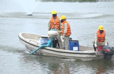 Hà Nội nói gì về chế phẩm xử lý nước độc quyền và vụ 200 tấn 'cá chết trắng' hồ Tây?