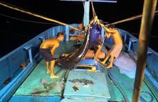 Một triệu lá cờ Tổ quốc cùng ngư dân bám biển(*): Căng sức, cân não giữa biển đêm
