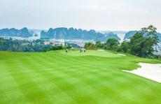Chi tiêu gấp hai lần khách thường, golfer sẽ mang lại điều gì cho du lịch Việt Nam?