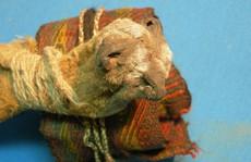 Phát hiện túi 'ma dược' ngàn năm trong mộ cổ