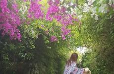 Những góc ảnh đẹp 'tựa trời Tây' tại FLC Sầm Sơn