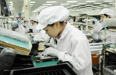 Lao động nữ Việt Nam tại Nhật Bản: 'Đồng tiền kiếm được đôi khi phải đánh đổi bằng nước mắt'